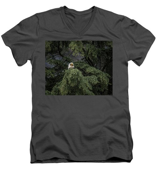Men's V-Neck T-Shirt featuring the photograph Eagle Tree by Timothy Latta