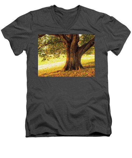 Early Autumn Oak Men's V-Neck T-Shirt