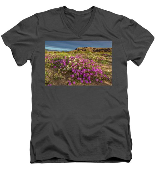 Men's V-Neck T-Shirt featuring the photograph Early Morning Light Super Bloom by Peter Tellone