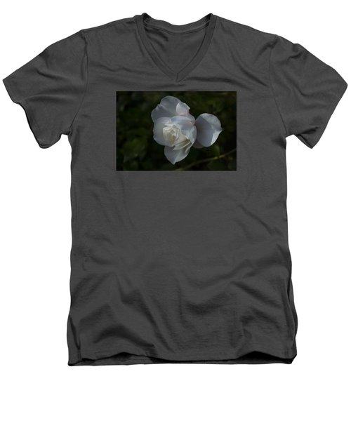 Early Morning Rose Men's V-Neck T-Shirt by Dan Hefle