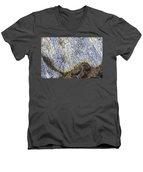 Earth Portrait 001-035 Men's V-Neck T-Shirt