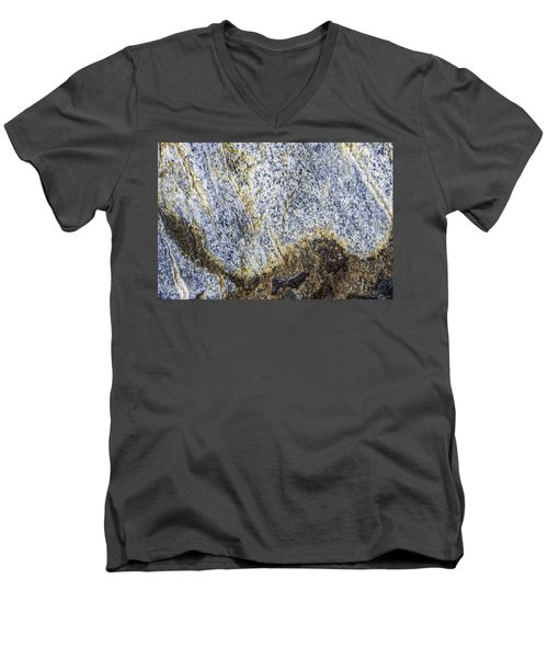 Earth Portrait 001-035 Men's V-Neck T-Shirt