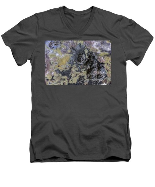 Earth Portrait 001-168 Men's V-Neck T-Shirt