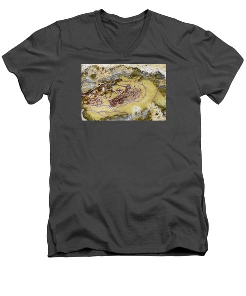 Earth Portrait 007 Men's V-Neck T-Shirt