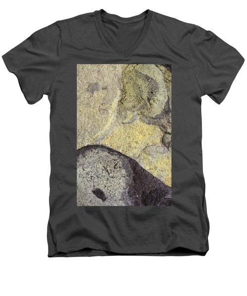 Earth Portrait 010 Men's V-Neck T-Shirt