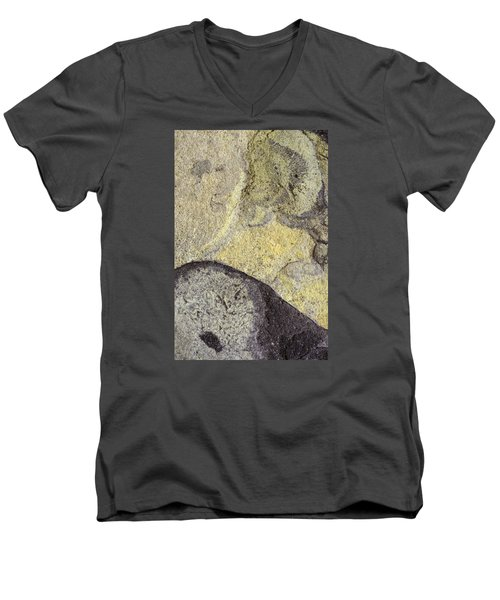 Earth Portrait 010 Men's V-Neck T-Shirt