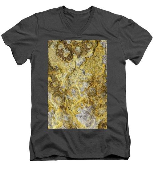Earth Portrait 013 Men's V-Neck T-Shirt