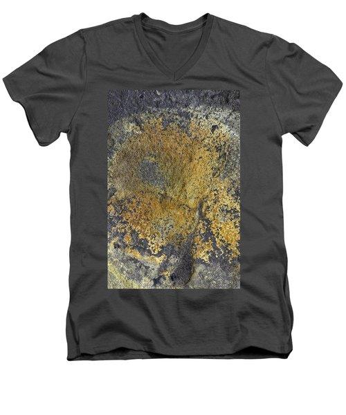 Earth Portrait 014 Men's V-Neck T-Shirt