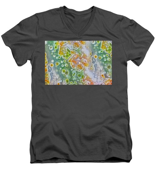 Earth Portrait 277 Men's V-Neck T-Shirt
