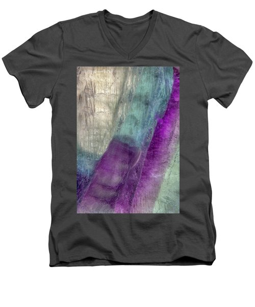 Earth Portrait 296 Men's V-Neck T-Shirt
