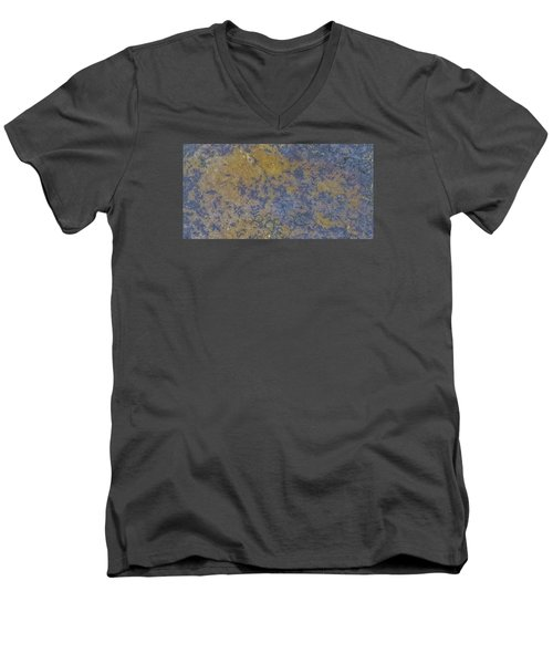 Earth Portrait L 2 Men's V-Neck T-Shirt