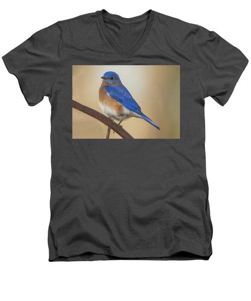 Eastern Blue Bird Male Men's V-Neck T-Shirt