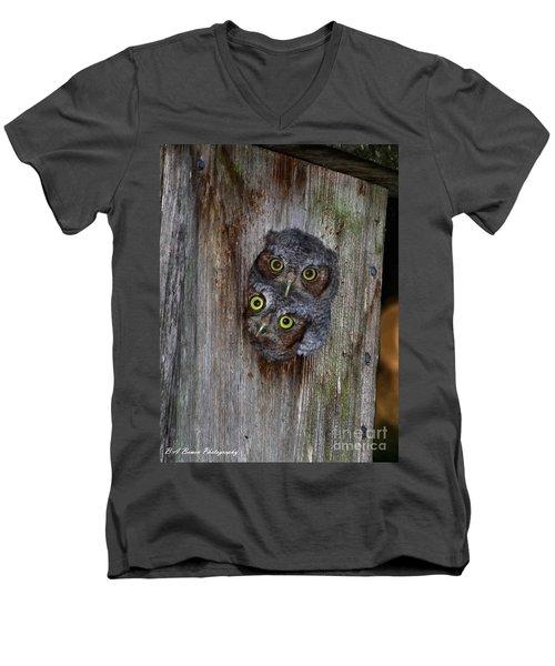 Eastern Screech Owl Chicks Men's V-Neck T-Shirt