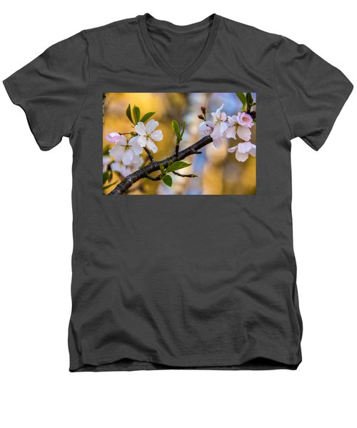 Easy Elegance Men's V-Neck T-Shirt by John Harding