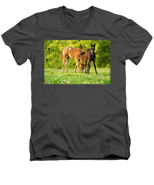 Easy Pickins Men's V-Neck T-Shirt