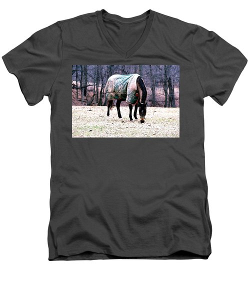Men's V-Neck T-Shirt featuring the photograph Eatin' Snowy Grass by Polly Peacock
