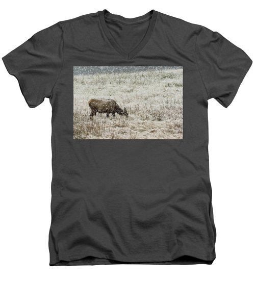 Eating Snow Maybe Men's V-Neck T-Shirt