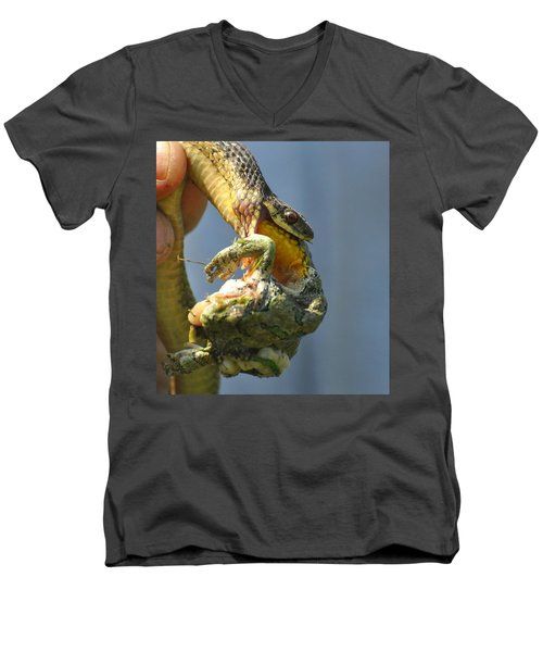 Ecosystem Men's V-Neck T-Shirt by Lisa DiFruscio