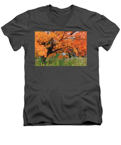 Edna's Tree Men's V-Neck T-Shirt