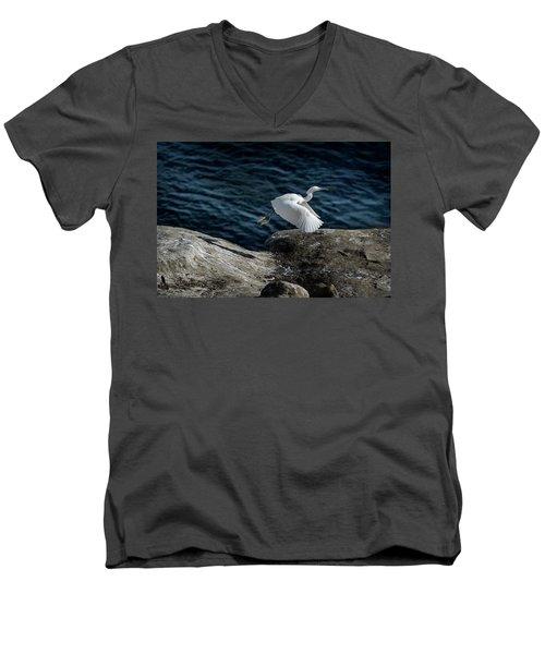 Egret Men's V-Neck T-Shirt by James David Phenicie