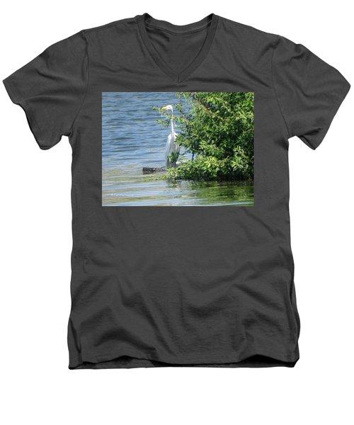 Great Egret In The Marsh Men's V-Neck T-Shirt