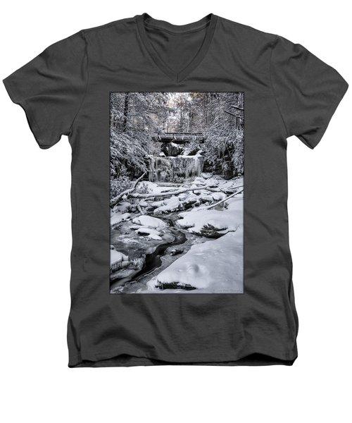 Elakala Falls Men's V-Neck T-Shirt