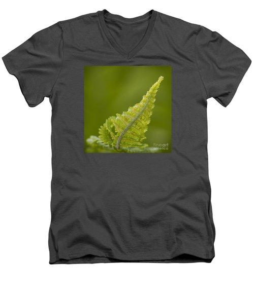 Elegant Fern. Men's V-Neck T-Shirt