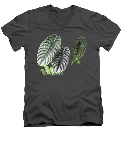 Elephant Ears Transparency Men's V-Neck T-Shirt