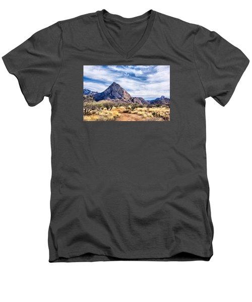 Elephant Head Men's V-Neck T-Shirt