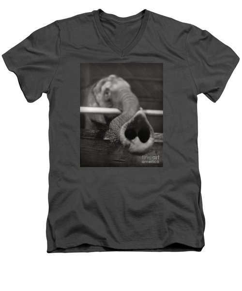 Men's V-Neck T-Shirt featuring the photograph Elephant Trunk by Martin Konopacki