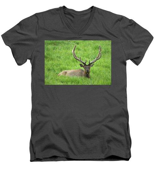 Men's V-Neck T-Shirt featuring the photograph Elk 6 by Gary Lengyel