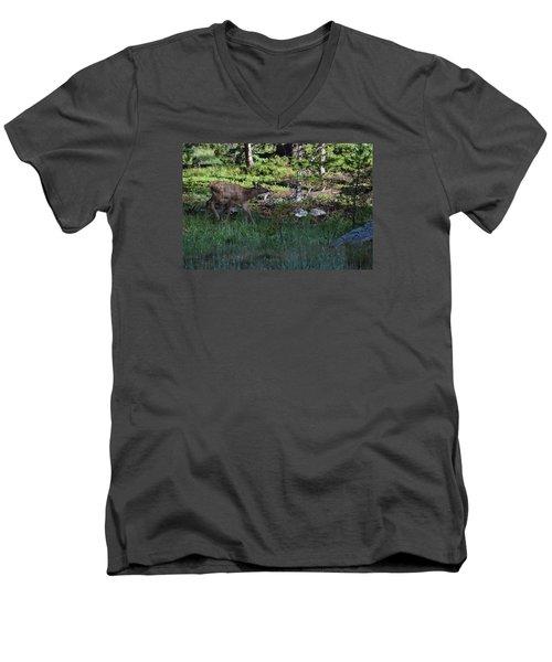 Baby Elk Rmnp Co Men's V-Neck T-Shirt