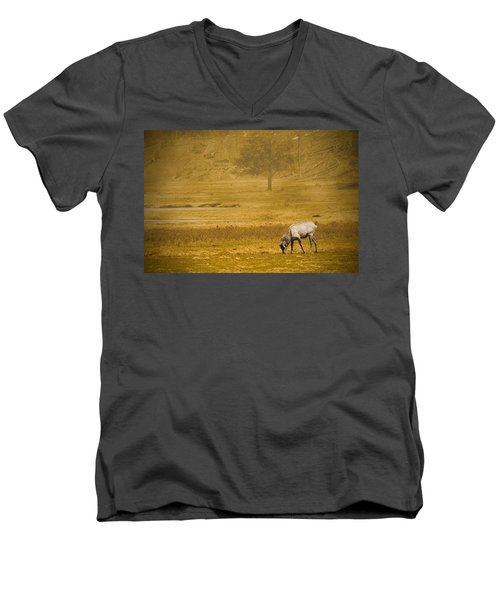 Elk Men's V-Neck T-Shirt