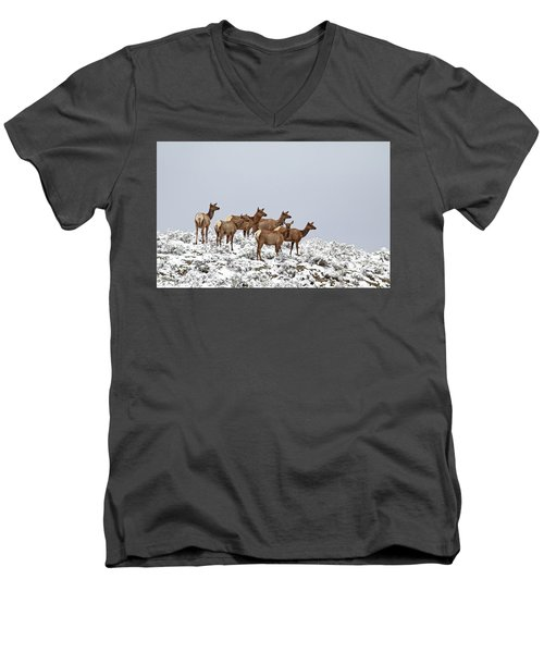 Elk Cows On The Alert In The Tetons Men's V-Neck T-Shirt