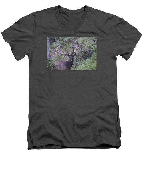 Bull Elk Rmnp Co Men's V-Neck T-Shirt
