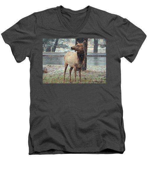 Elk In The Snow Men's V-Neck T-Shirt by Debby Pueschel