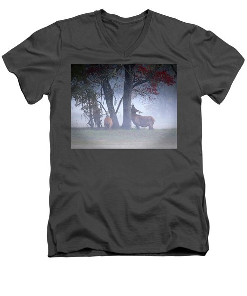 Elk Neck Scratch Men's V-Neck T-Shirt