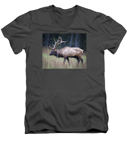 Men's V-Neck T-Shirt featuring the photograph Elk by Tyson and Kathy Smith