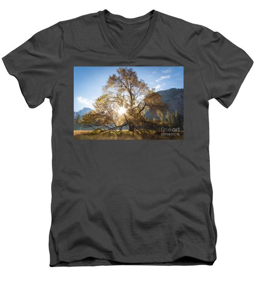 Elm Tree  Men's V-Neck T-Shirt