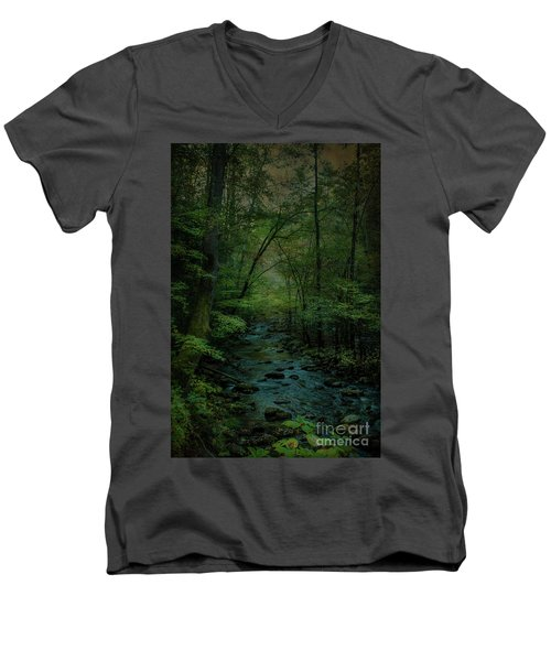 Emerald Creek Men's V-Neck T-Shirt