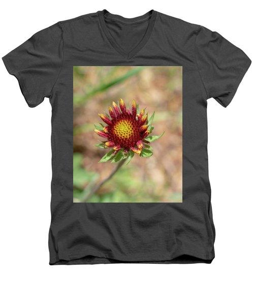 Emergent Amber Men's V-Neck T-Shirt