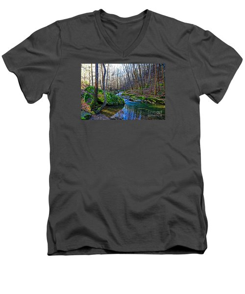 Emory Gap Branch Men's V-Neck T-Shirt