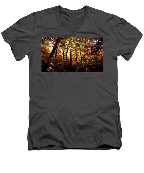 Enchanted Forest Men's V-Neck T-Shirt