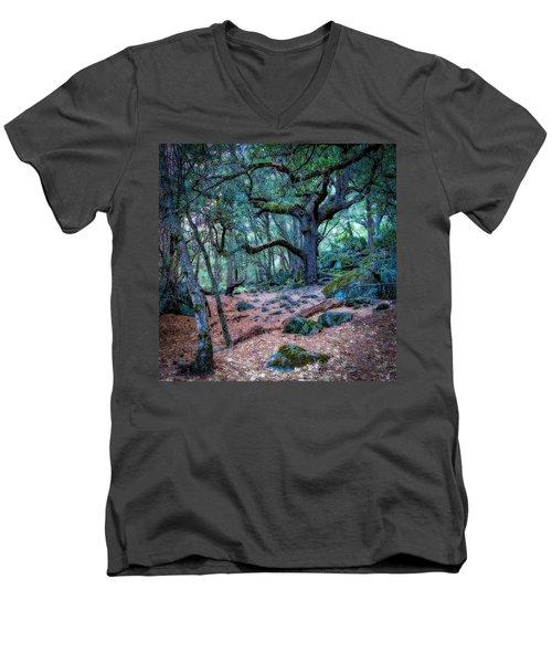 Enchanted Men's V-Neck T-Shirt by Jerry Golab