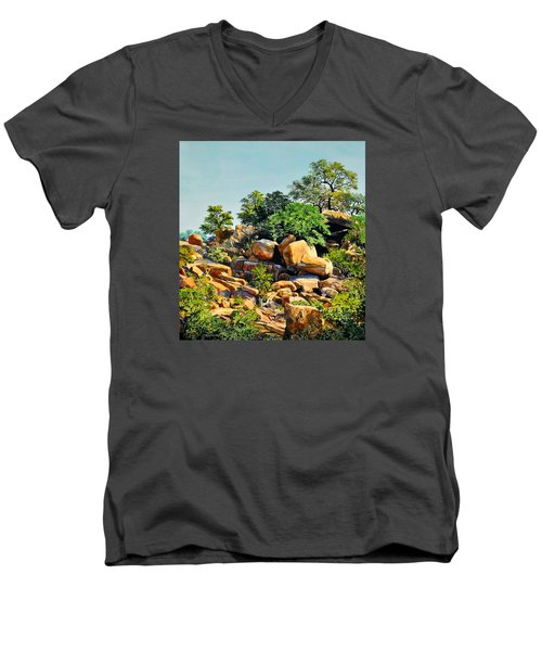 Enchanted Rock Men's V-Neck T-Shirt