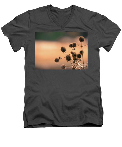 Men's V-Neck T-Shirt featuring the photograph End Of Summer by Lisa L Silva