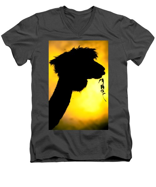 Men's V-Neck T-Shirt featuring the photograph Endless Alpaca by TC Morgan