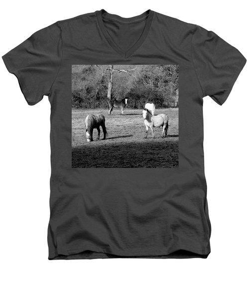 English Horses Men's V-Neck T-Shirt