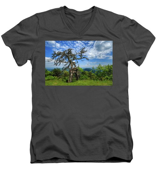 Ent At The Top Of The Hill - Color Men's V-Neck T-Shirt by Joni Eskridge