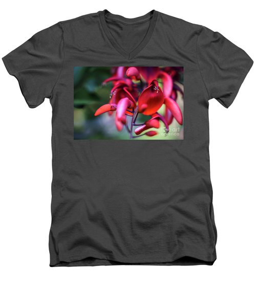 Men's V-Neck T-Shirt featuring the photograph Erythrina Crista Galli Flower Spain Square Cadiz Spain by Pablo Avanzini